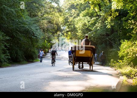 Englischer Garten in München, Bayern, Deutschland - Stockfoto