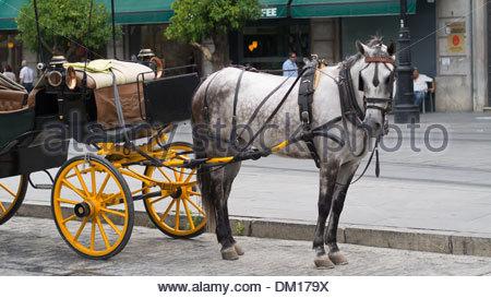 Pferd und Wagen, Sevilla, Andalusien, Spanien - Stockfoto