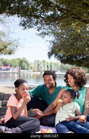 Familie Picknick im park - Stockfoto