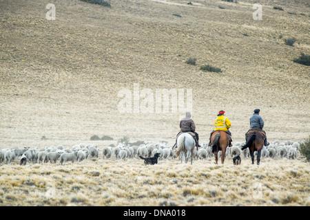 Gauchos Herden leben mit Pferden, Argentinien