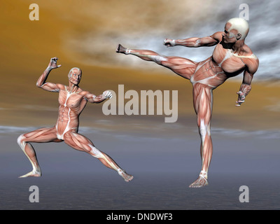 Männliche Muskulatur bei der Bekämpfung der Haltung. - Stockfoto
