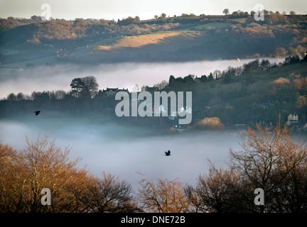 Nebliger Morgen im Tal Stroud, Gloucestershire in der Nähe von Rodborough gemeinsamen Dez. 2013 - Stockfoto