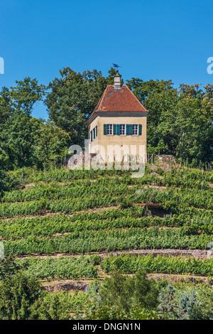Der Minckwitzsche Weinberg-Haus war eines der wichtigsten Weingüter in Radebeul bei Dresden, Sachsen, Deutschland, - Stockfoto