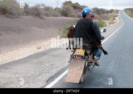 Motor Cycle-Taxi mit Kunden tragen eine Ziege auf Nairobi Namanga Straße südlich von Kajiado Kenia Afrika - Stockfoto