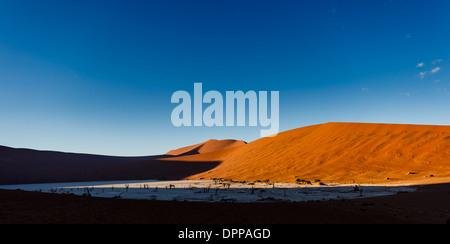 Schatten schleicht sich auf hellen roten Sanddünen als Sonnenuntergang Ansätze in abgelegenen Gebiet der namibischen - Stockfoto