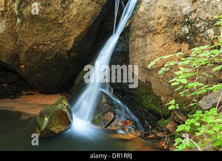 Felsen und Wasserfall, En Medio Fluss Santa Fe National Forest, New Mexico, USA - Stockfoto