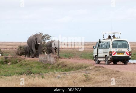 Elefantenfamilie Fuß Straße in Richtung weiße Somak Kleinbus in Amboseli National Park Kenia in Ostafrika - Stockfoto