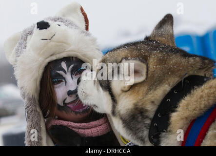 Toronto, Kanada. 26. Januar 2014. Ein Schlittenhunde hautnah einen freiwilligen geschminkt Schlittenhunde während - Stockfoto
