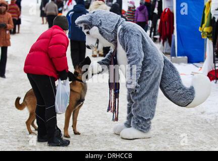 Toronto, Kanada. 26. Januar 2014. Ein Schlitten Hund in der Nähe von freiwilliger anziehen als ein Schlittenhunde - Stockfoto