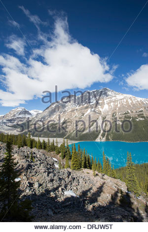 Peyto Lake angesehen von Bow Summit, Icefields Parkway, Banff Nationalpark, Kanada - Stockfoto