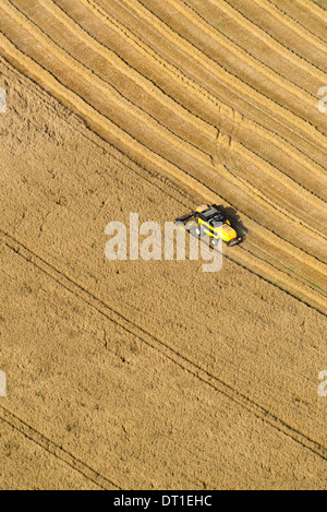 Luftaufnahme von einem Mähdrescher in einem Weizenfeld. Arbeiten auf dem Bauernhof: Sommer-Ernte - Stockfoto