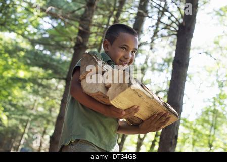 Summer-A Boy mit Brennholz durch den Wald - Stockfoto