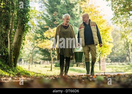Älteres Paar mit Eimer Äpfel im Obstgarten - Stockfoto