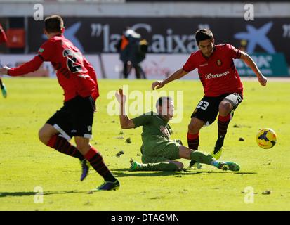 Szene aus Fußballspiel zwischen Real Mallorca und Sporting Gijon auf spanischen Zweitligisten - Stockfoto