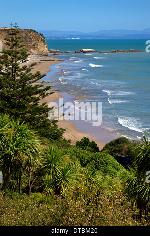 Cape Kidnappers, Hawkes Bay, in der Nähe von Hastings, Nordinsel, Neuseeland - Stockfoto