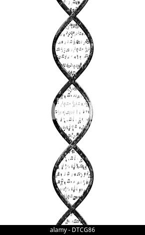 Strang der DNA besteht aus Noten vor einem weißen Hintergrund. - Stockfoto