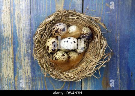 Eiern in einem Nest auf hölzernen Hintergrund - Stockfoto