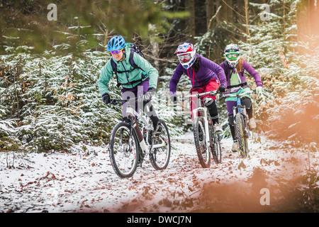 Drei weibliche Mountainbiker fahren durch Wald im Schnee - Stockfoto