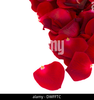 Haufen von roten Rosenblättern hautnah - Stockfoto