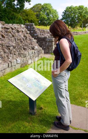 Touristen, die lesen das Schild am Hadrianswall bei Banken Cumbria England Vereinigtes Königreich Großbritannien - Stockfoto