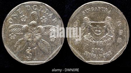 1 Dollar Münze Singapur 2006 Stockfoto Bild 79199155 Alamy