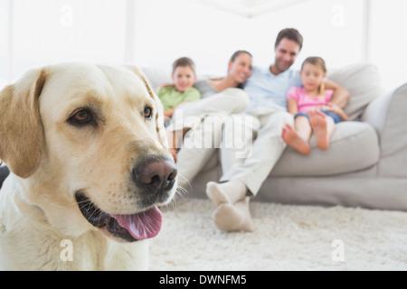 Glückliche Familie sitzen auf der Couch mit ihrem Haustier Labrador im Vordergrund - Stockfoto
