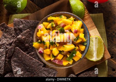 Frische hausgemachte Mango-Salsa mit Mais-Chips - Stockfoto
