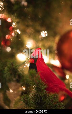 Roter Kardinal Vogel Ornament in beleuchtete Weihnachtsbaum, Nahaufnahme - Stockfoto