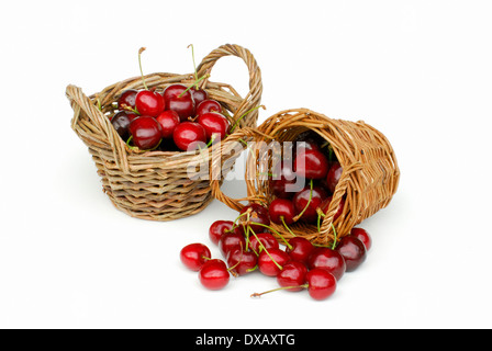 Sweet Cherry - Stockfoto