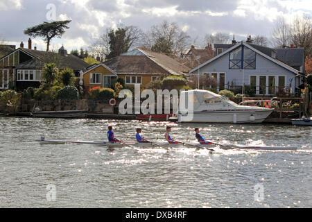 Themse in Hampton Court, SW-London, UK. 22. März 2014. Vier Mann ewern während der Kingston-Kopf des Rennens Fluss - Stockfoto