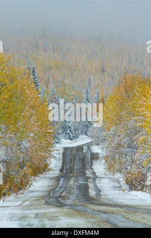 Herbstfärbung und der erste Schnee auf der Straße nach Keno, Silver Trail, Yukon Territorien, Kanada - Stockfoto