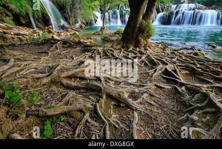Krka, Kroatien. Nationalpark. - Stockfoto