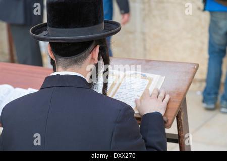 Ultra-orthodoxer Jude betet an der Klagemauer, Klagemauer, Blick über seine Schulter auf den Talmud, Jerusalem, - Stockfoto