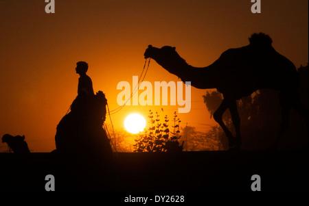 Dem Weg zurück nach Hause während des Sonnenuntergangs. - Stockfoto