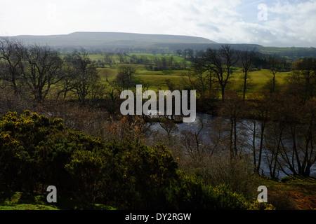 Ansicht der YorKshire Dales mit Blick auf den Fluss Ure. - Stockfoto