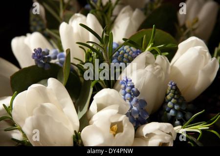 Hochzeit Blumen weisse Tulpen Blaue Hyazinthen Stockfoto, Bild ...