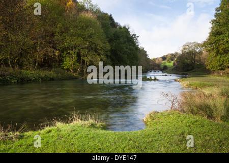 Das kristallklare Wasser der der Fluß Lathkill Durchströmung Lathkill Dale in der Peak District National Park, England - Stockfoto