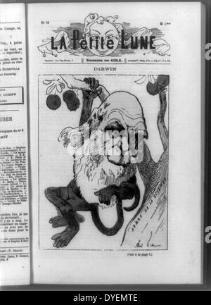 Karikatur Affen-Sex
