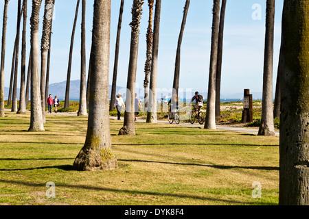 Menschen, genießen Sie einen Spaziergang oder fahren auf einem Strand Weg unter hohen Palmen mit nur Stämme, die - Stockfoto