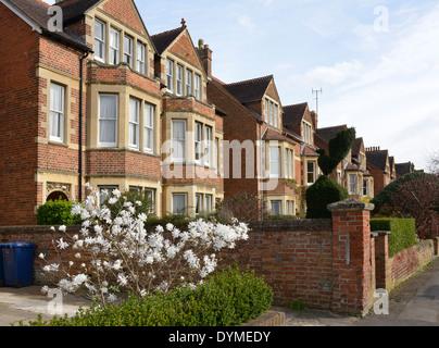 Häuser in Nord-Oxford - Stockfoto