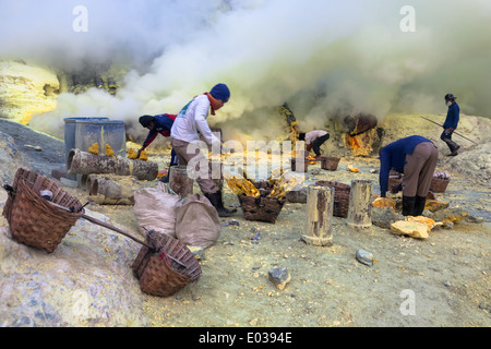 Schwefel-Bergbau-Betrieb am Kawah Ijen, Banyuwangi Regency, Ost-Java, Indonesien - Stockfoto