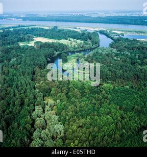 Luftaufnahme des Auenwaldes und Rhein Elsass Frankreich - Stockfoto