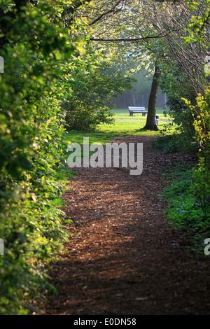 Öffentlicher Park Land Spaziergang Holzspänen Teppich. Frische Luft und das gute Gefühl erhalten Sie in einer der - Stockfoto