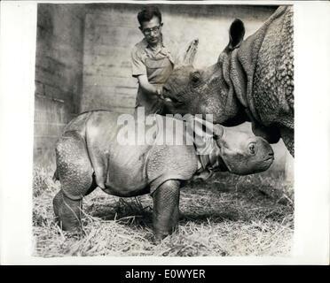 16. Juni 1964 - sie werden wachsen bis zu werden als schön wie ihre Mutter!: The Rhinoceros der Region Assam ist - Stockfoto
