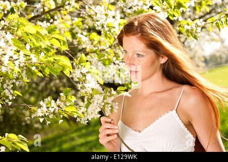 25. April 2009 - 25. April 2009 - lange rote Haare Frau im weißen Kleid stehen unter blühenden Baum - Stockfoto