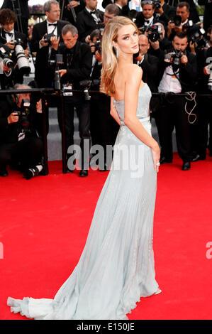 """Cannes, Frankreich. 21. Mai 2014. Rosie Huntington-Whiteley Teilnahme an """"The Search"""" premiere auf der 67. Filmfestspiele - Stockfoto"""