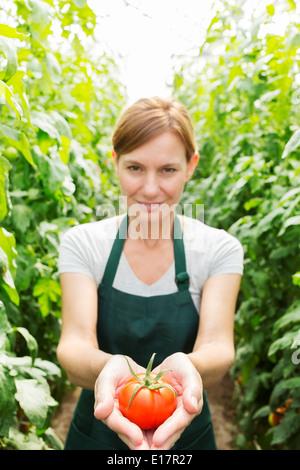 Porträt der Frau, reife Tomate im Gewächshaus - Stockfoto