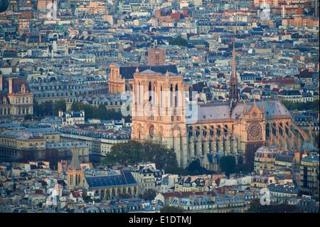 Frankreich, Paris, Ile De La Cite, Kathedrale Notre-Dame - Stockfoto