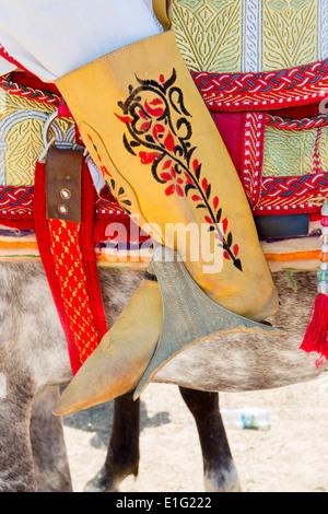 Detail der traditionell eingerichteten arabischen Barb Pferde erklingt in eine Fantasie in der Nähe von Rabat in - Stockfoto