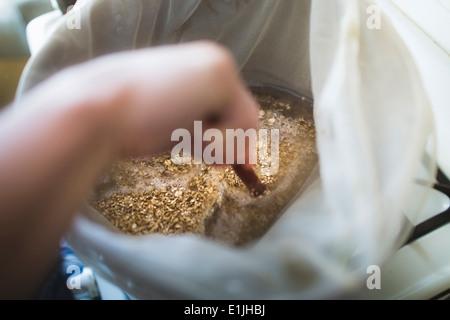 Nahaufnahme eines männlichen Hand rühren zwei Zeile Korn in Pfanne für Hause brauen Bier - Stockfoto